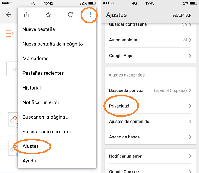 Borrar datos navegador Chrome