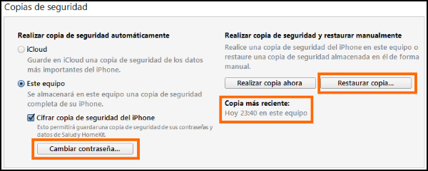 Captura de opciones de la copia en iTunes